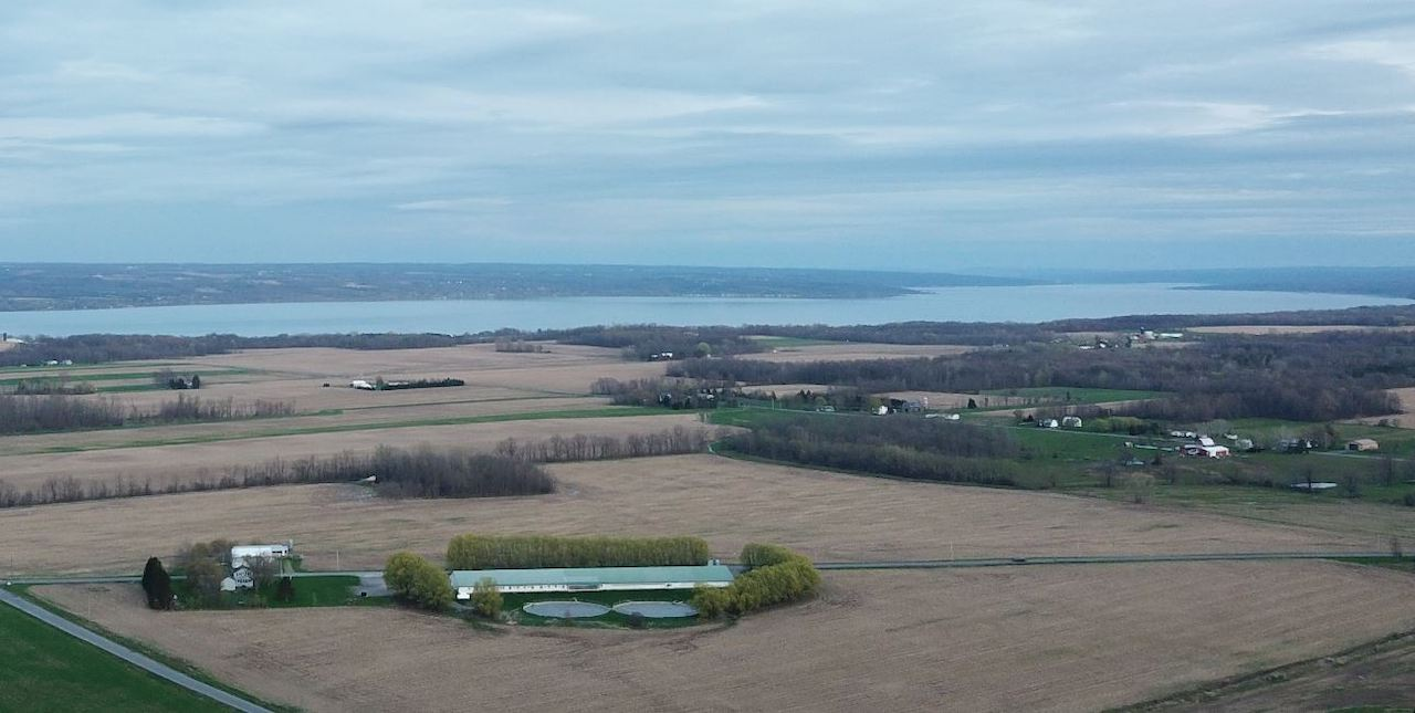 Overlooking Cayuga Lake (photo)